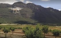 The Western Cape's agricultural export basket is growing